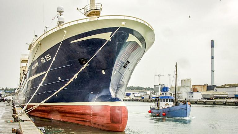 kæmpe skib og kutter i hirtshals havn